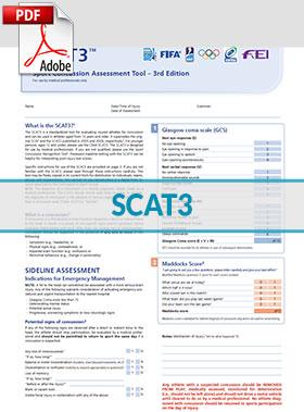SCAT3